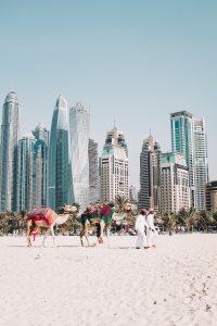 dubai gebouwen strand en kamelen