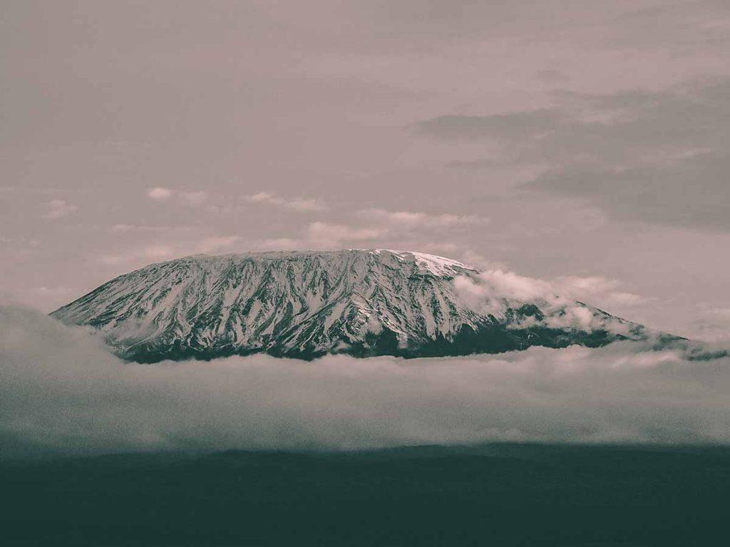 kilimanjaro-travesol