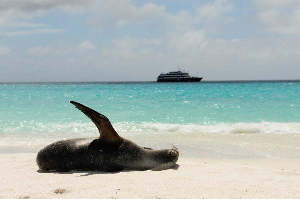cruise-galapagoseilanden-travesol