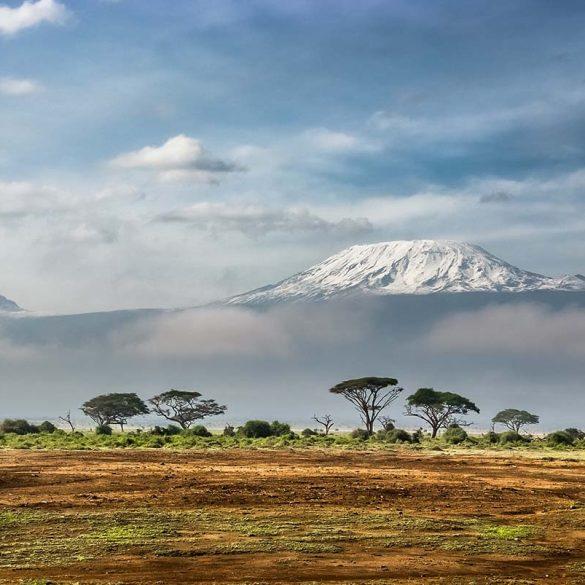 kilimanjaro-bezoeken-travesol