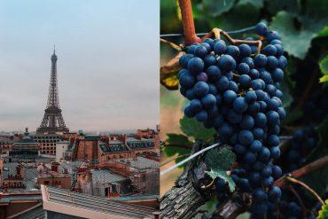 verborgen-wijngaard-parijs-eifeltoren-travesol