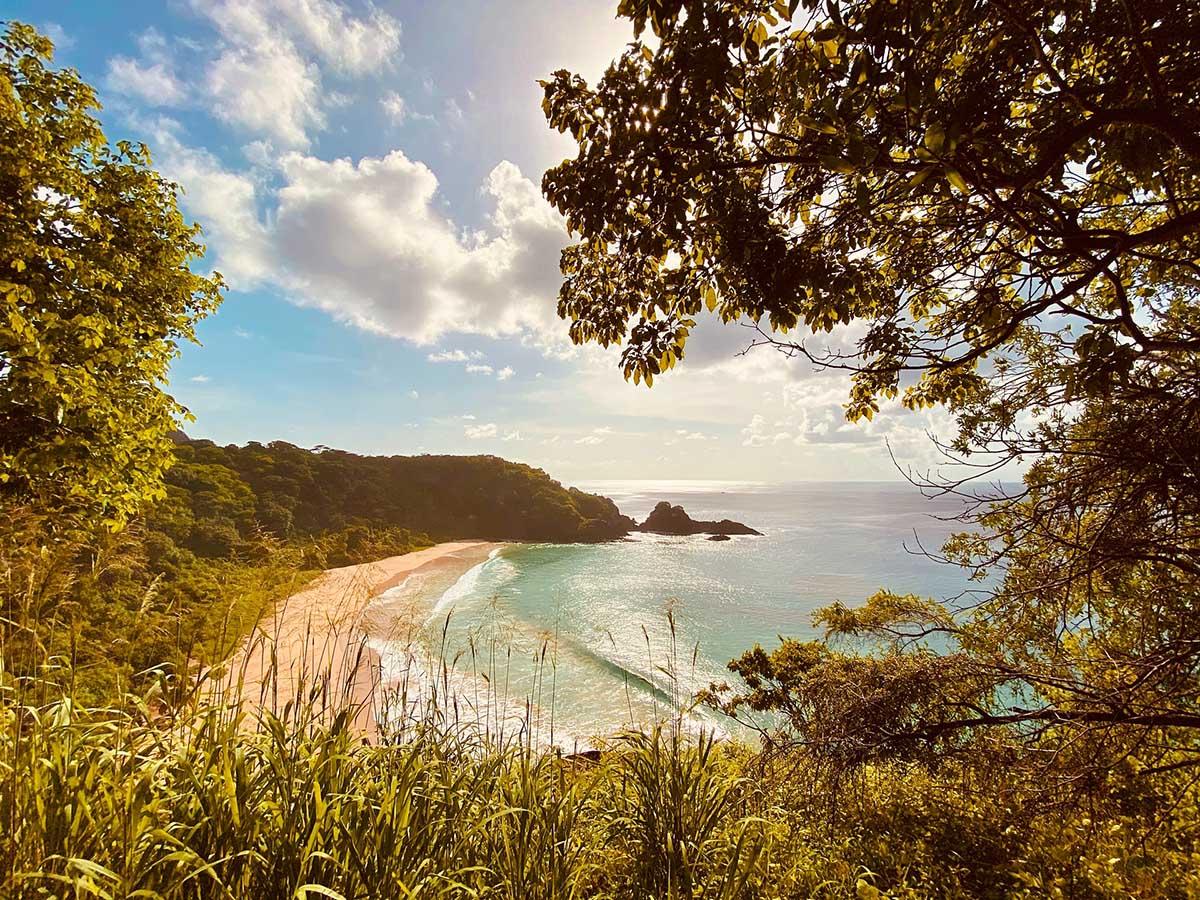 braziliaanse-eilanden-travesol
