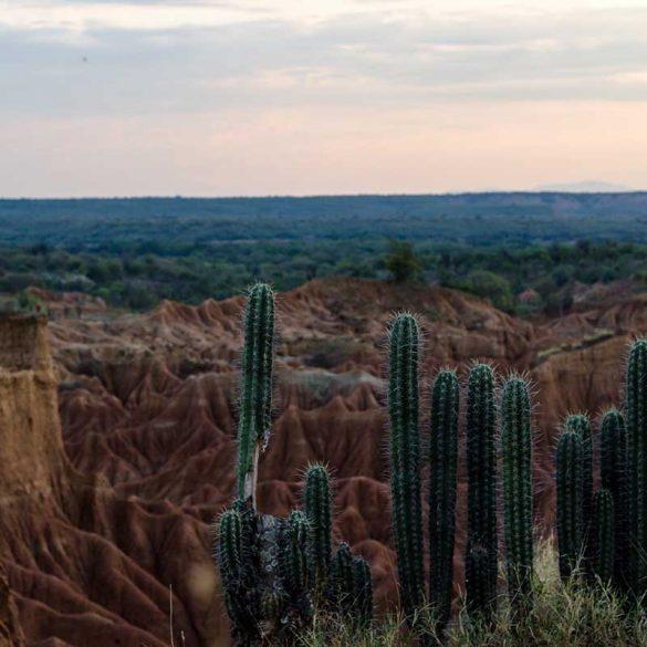 colombia-tatacoa-woestijn-travesol